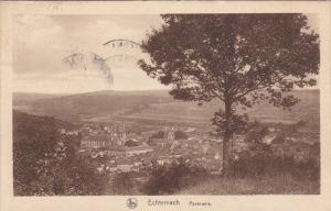 LUXEMBOURG, PU-1929; Echternach, Panorama