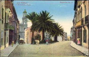 spain, GRAN CANARIA, LAS PALMAS, Street, Palms (1910s)