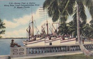 Florida Fort Myers Shrimp Fleet At Anchor Along Caloosahatchee River 1951 Cur...