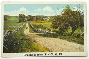 Tinicum  PA, c1900s Street View, Homes, Horse Driven, Old Vintage Postcard A37