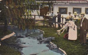 Arkansas Hot Springs Feeding Time At The Alligator Farm 1921