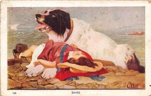 Artist~Saved Rescue Dog Pants on Rocky Shore~Girl Saved From Ocean Waves~1911