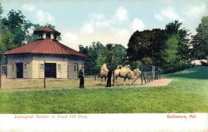 USA Maryland Baltimore Zoological Garden in Druid Hill Park 04.24