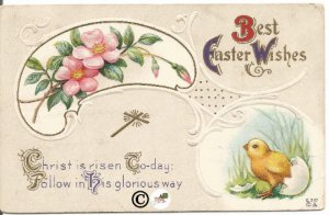 Chateau Rose Pink Rose Branches Palette Hatching Chick Gold Cross Old Postcard