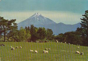 Mount Egmont and Pasture Lands of Taranaki New Zealand