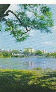 Mirror Lake St Petersburg Florida