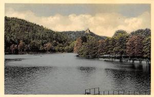 Spa Lac de Warfaaz Lake Landscape Trees Panorama