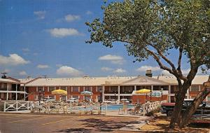Amarillo Texas~Ramada Inn Motel~Route 66~1950s Cars Poolside~Postcard