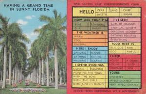 Humour Busy Persons Correspondence Card Having Grand Time In Florida