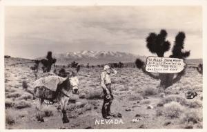 RP: Nevada , 40s-50s; Deser, Man & Donkey, A long ways away from civilization