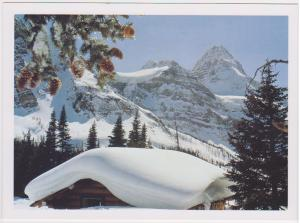 SNOW COVERED MT. ASSINIBOINE ALBERTA