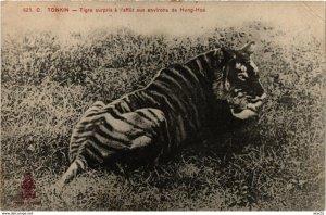 CPA INDOCHINA Tonkin Tigre surpris a l'affut VIETNAM (959293)