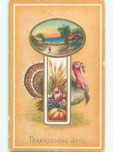 Divided-Back THANKSGIVING SCENE Great Postcard AA0693