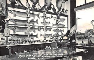 Lena WI Taxidermy Hunters & Fisherman's Tavern Birds & Fish RPPC Postcard