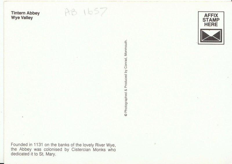 Wales Postcard - Tintern Abbey - Wye Valley - Monmouthshire   AB1657