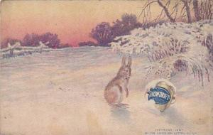 Rabbit looking at jug of Snowdrift in the snow, 00-10s