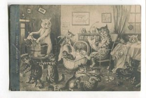 285815 Dressed CAT Fight PUSS by Louis WAIN Vintage RARE PHOTO