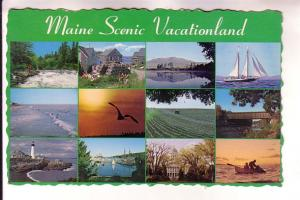 Nineview, Lighthouse, Sailboat, Lobster Traps, Fishing, Seagull Etc. Maine