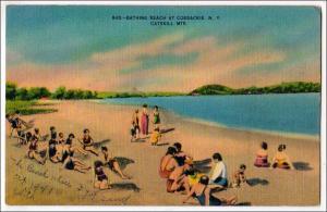Bathing Beach at Coxsackie NY