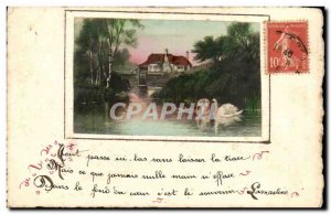 Fancy Old Postcard Everything goes down here without a trace (swan swans)