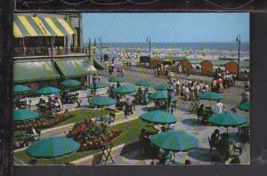 Atlantic City,NJ Postcard