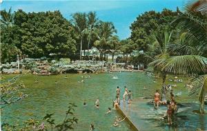 Coral Gables FL~Historic City Venetian Swimming Pool~Old Quarry~1950s Postcard