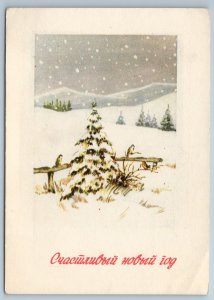 CAT in hat broke a Christmas tree toy Ball Misbehaved NEW Russia Postcard