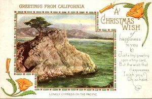 California Greetings A Christmas Wish Lonely Cypress On The Pacific 1916