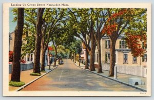 Nantucket Massachusetts~Centre Street in Fall~White Picket Fences~1943 Postcard