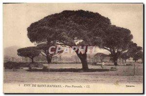 Old Postcard Tree Around Saint Raphael Pins umbrellas
