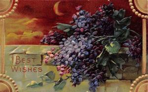 Bright Bold Purple Flowers on Stone Wall~Crescent Moon~Gold Emboss Corners~1600