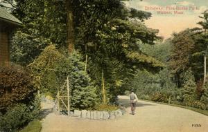 MA - Malden. Pine Banks Park, Driveway
