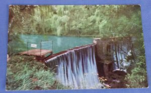 Vintage Postcard The Weir Blue Lake Jenolan Caves New South Wales Australia A1C