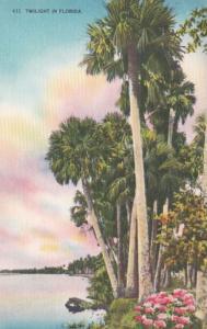Florida Miami Twilight Scene