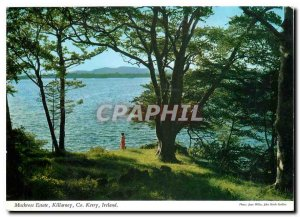 Postcard Modern Muckross Estate Killarney Co Kerry Ireland