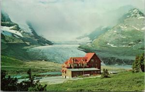 Columbia Icefield Chalet Alberta AB Unused Vintage Taylorchrome Postcard D80