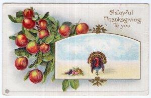 A Joyful Thanksgiving To You