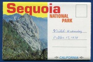 Sequoia National Park California ca Grant Forest Crescent Meadow postcard folder