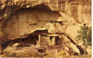 Mesa Verde National Park,Colorado/CO Postcard,Oak Tree House