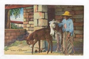 Amigos y Companeros, Boy & Donkeys, PU-1948