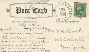 R. P. O. Cancel 1909 Mount Morris & Buffalo. Railway Post Office Cancel Cover