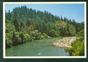Russian River GUERNEVILLE CALIFORNIA Swimmers Beach CA Continental Postcard