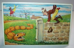 Vintage Halloween Postcard Row Of Pumpkins Bien Julius Series 980 Philadelphia