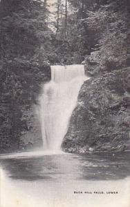Lower Falls Buck Hill Falls Pennsylvania 1908