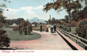 Flowers in Lincoln Park, Chicago, Illinois, Early Postcard, Unused
