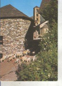 Postal 013460: Iglesia romanica de Santa Maria de Taull en Pirineu Catala