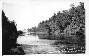 Hart Michigan~Juniper Beach The Inlet Scene~Trees along Shoreline~Vintage RPPC