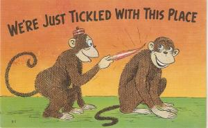 Monkey humour. We'rejust ticking with this  place Humorous American linen pc