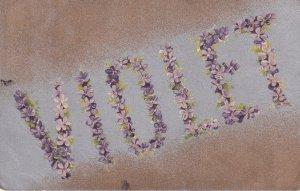 A Name Called Violet Old Postcard