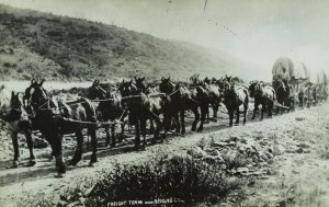 RPPC Freighting Team Near Redding, Ca. Vintage Postcard F71